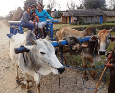 We rode on Shivratri - children in the villages held strings across the road so we couldn't cross.  They asked for money and then released the strings - similar to our Trick or Treating in the USA!