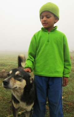 Hero is such a cool dog!  Playful, protective and affectionate...