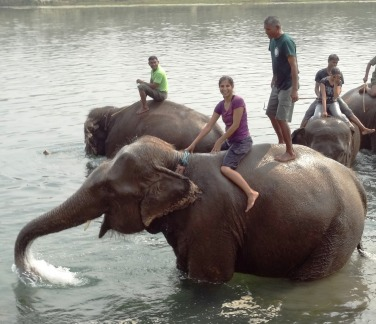 Cold river water splashed from an elephant's trunk - once in a lifetime experience!